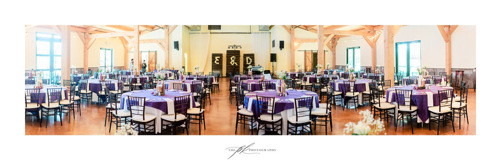 magnolia-halle-purple-modern-country-wedding-photography-san-antonio.jpg