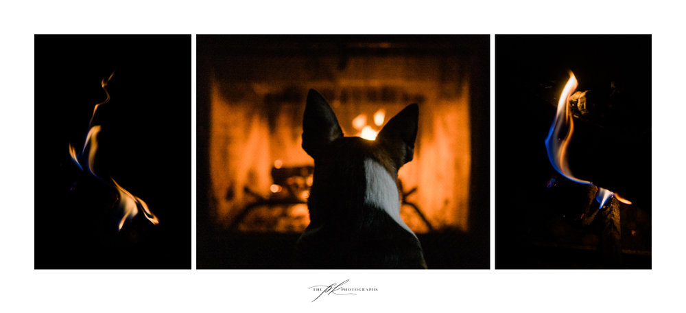 Fireside with Duke.