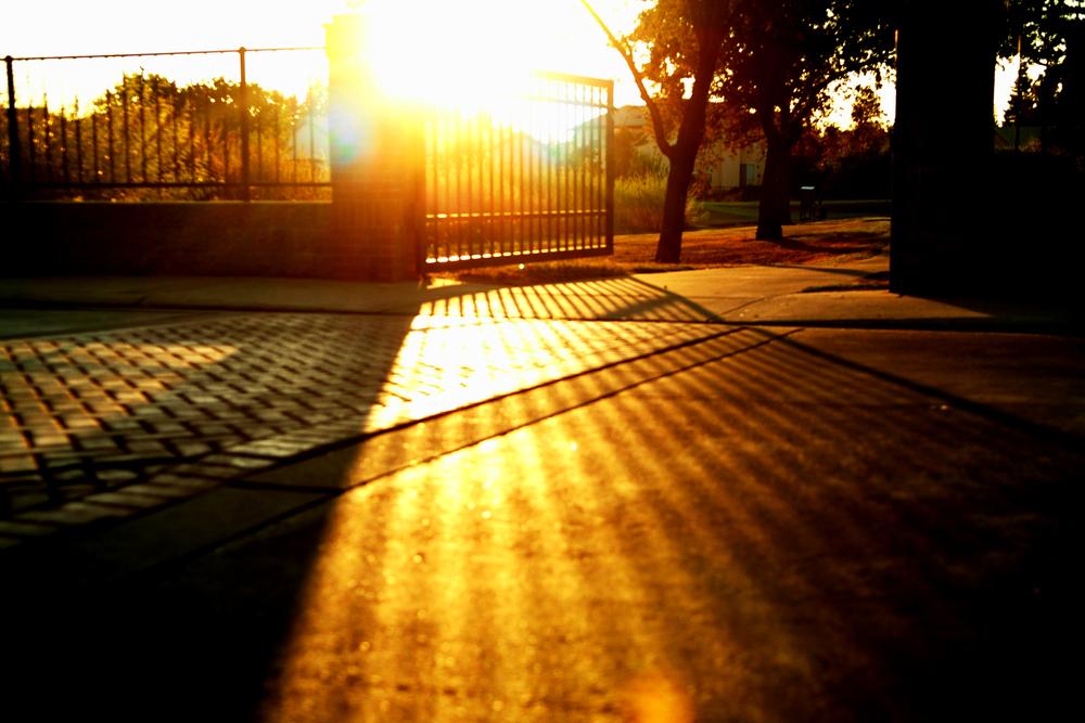 Gate in Roseville.jpg