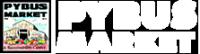 Pybus+logo.png