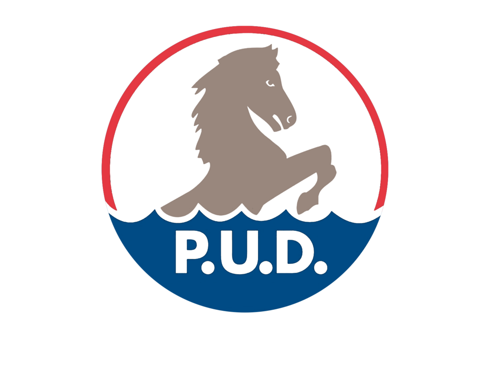 Chelan-County-PUD_Logo.png