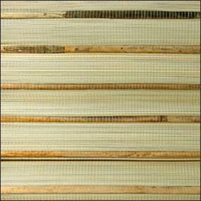 Bamboo Stripe