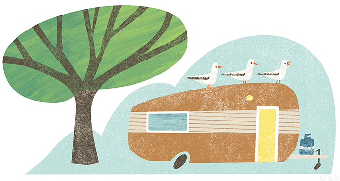 Illustration created for  El Rancho  camp in Waikanae New Zealand.