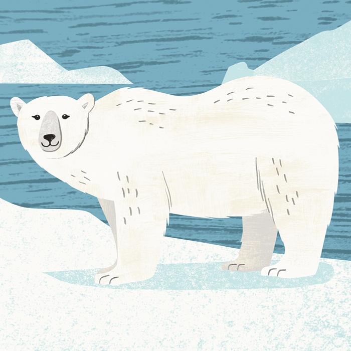AK_HTHAH_Ocean_PolarBear.jpg