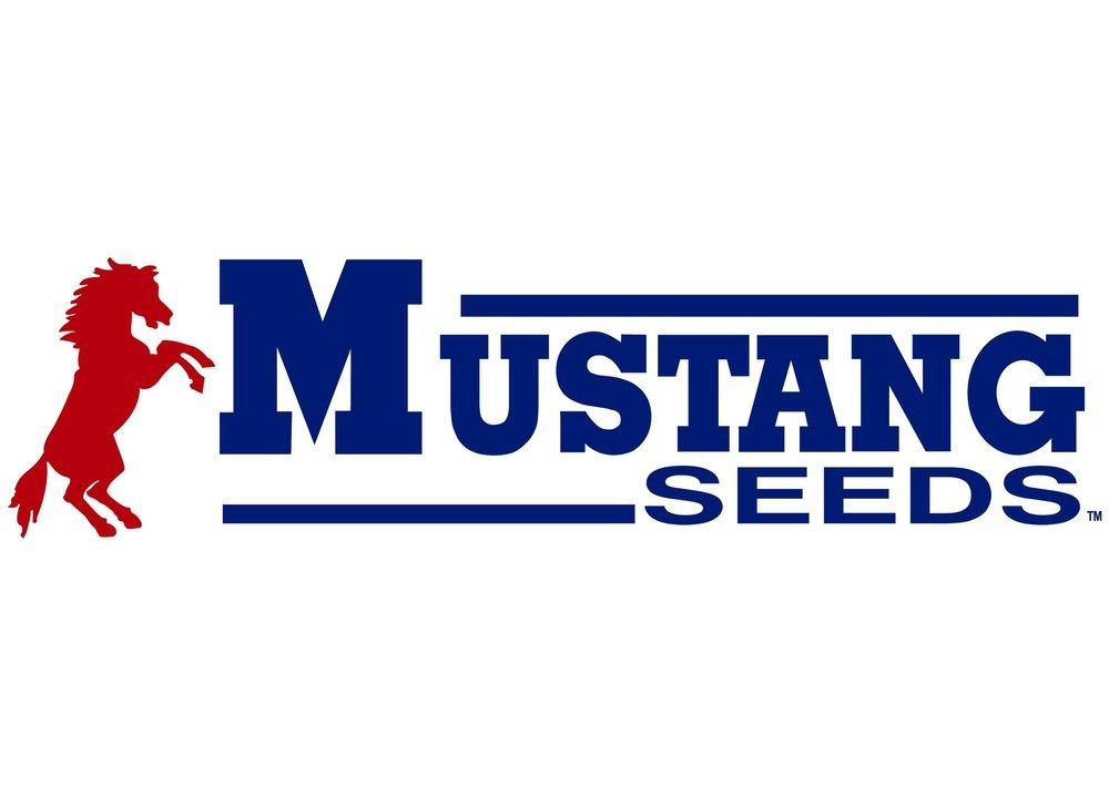 Mustang Seeds-01.jpg