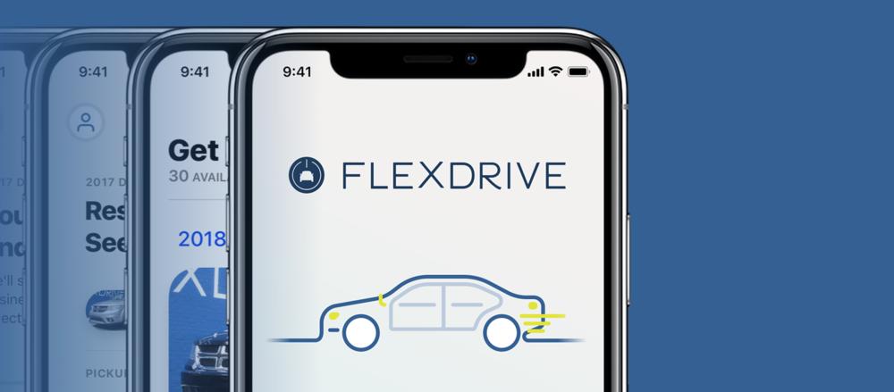 Flexdrive Screens.png