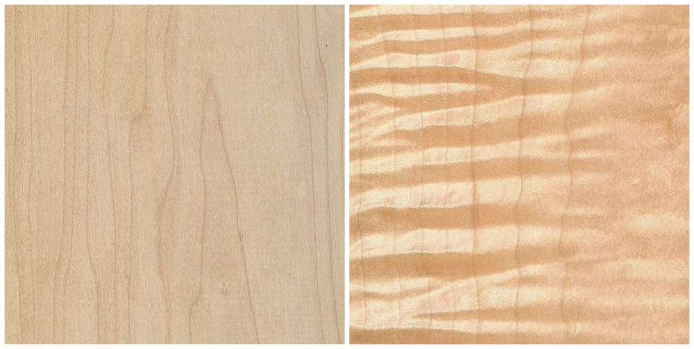 Left: Maple, Right: Curly Maple
