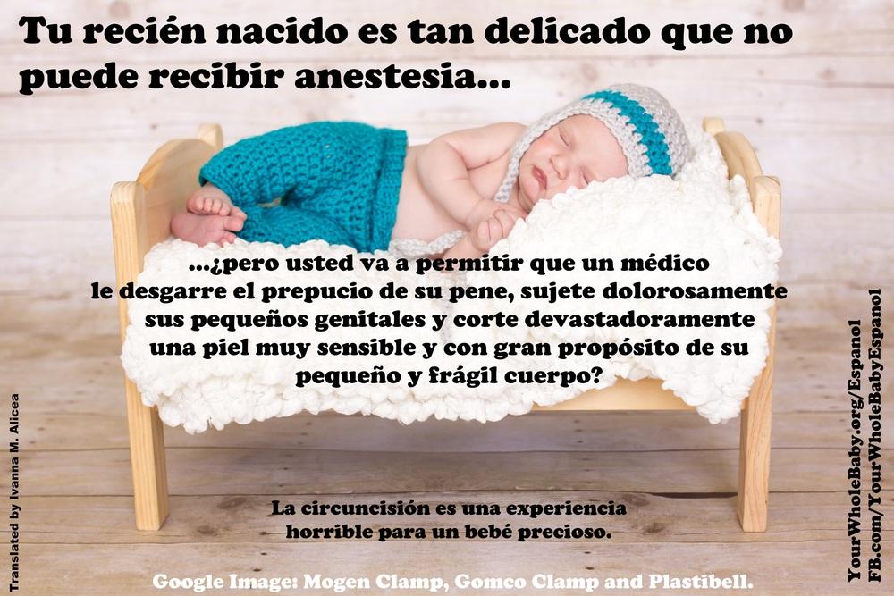 meme2SpanishJPEG.jpg
