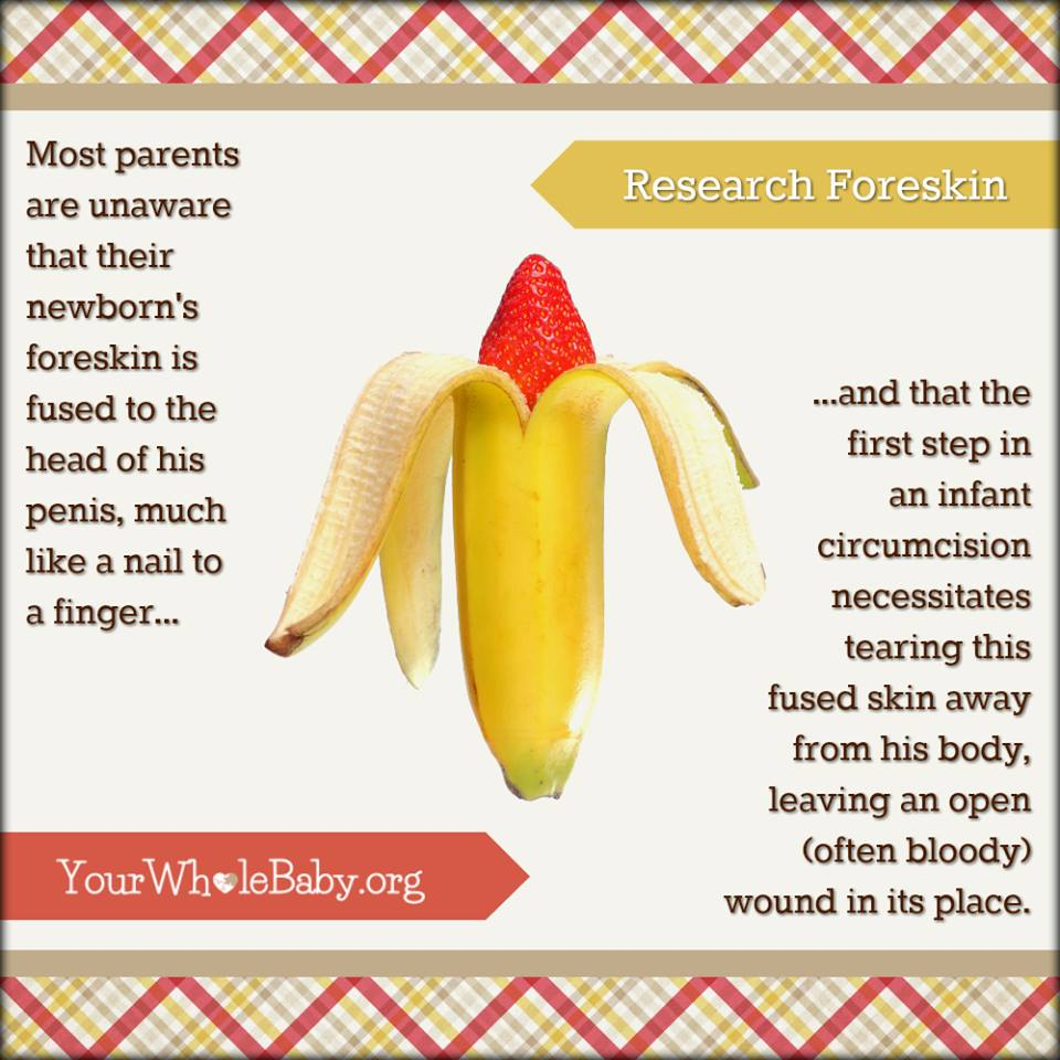 "Image: A partially opened banana revealing a red upside-down strawberry inside. Image Text: ""Research Foreskin. Most parents are unaware that their newborn's foreskin is fused to the head of his penis, much like a nail to a finger...and that the first step in infant circumcision necessitates tearing this fused skin away from his body, leaving an open (often bloody) wound in its place. www.yourwholebaby.org"""