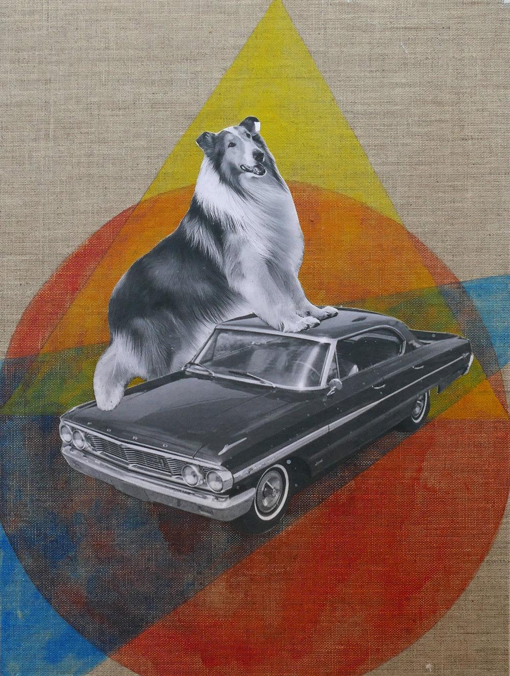 Lassie Galaxy
