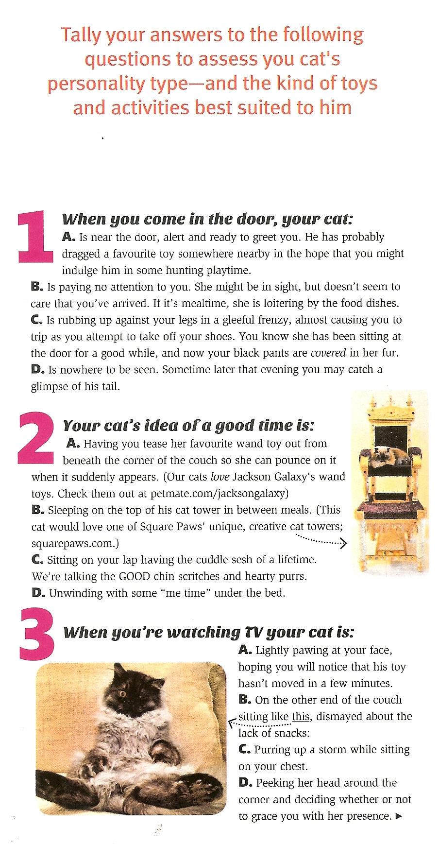 Modern Cat Fall 2015 article p2.jpg