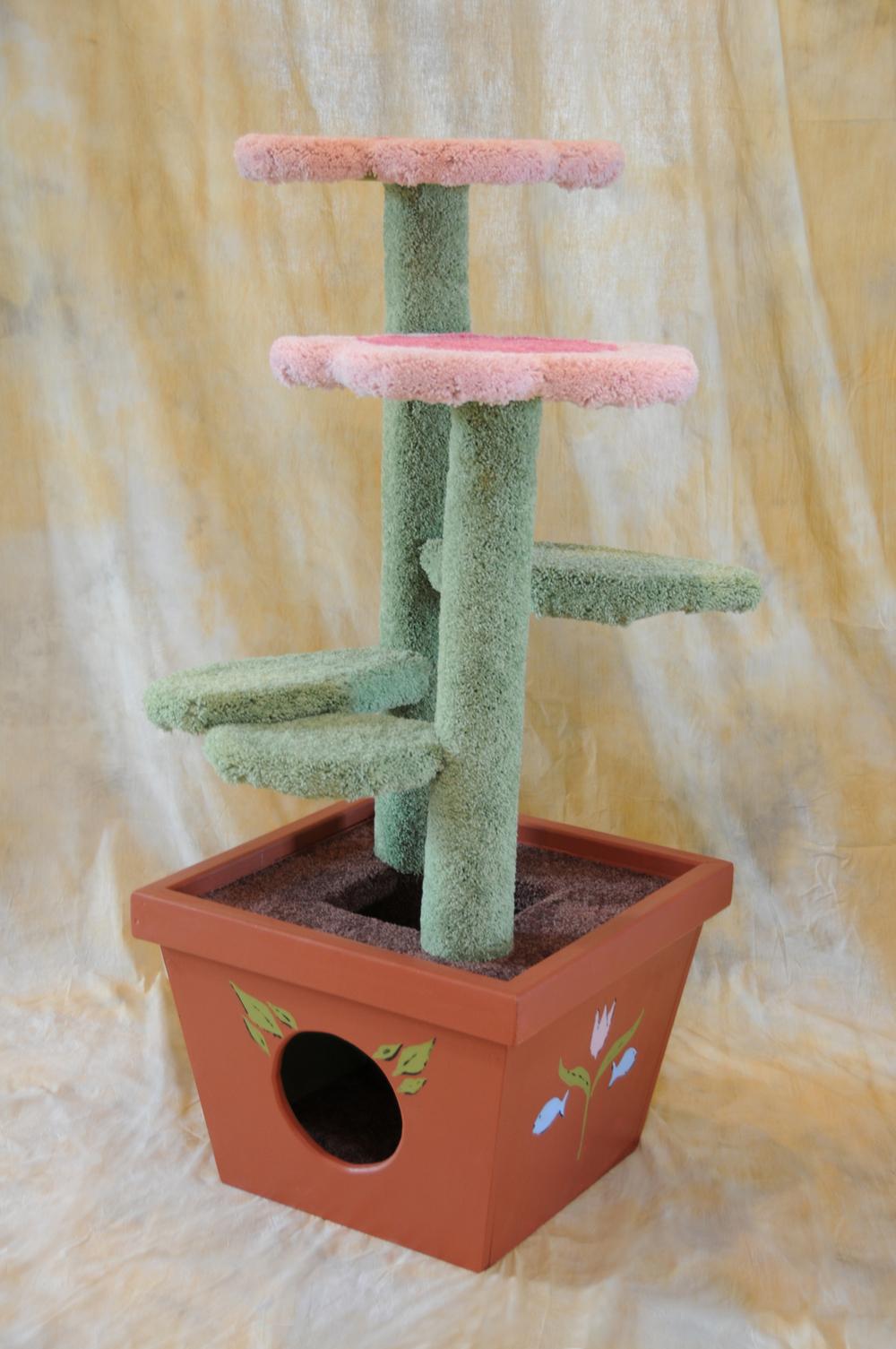 Pink Daisy Pot 002.JPG
