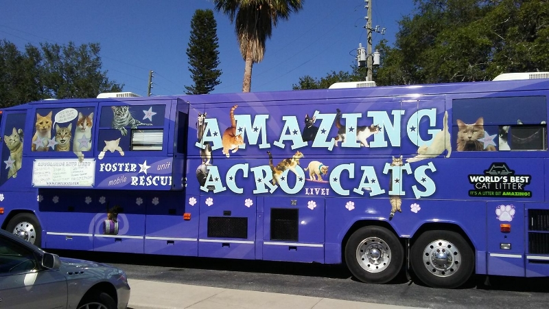 The Acro-Cats tour bus