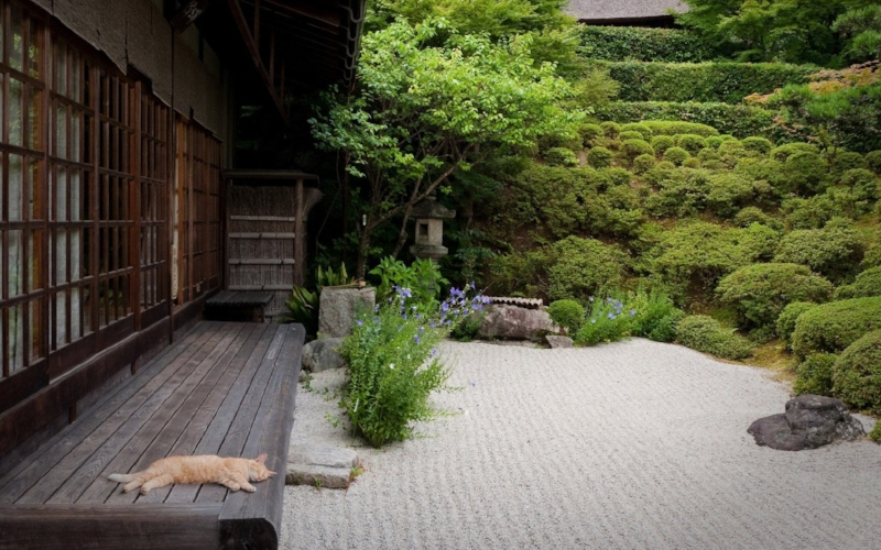 One of many Japanese garden images that inspired us