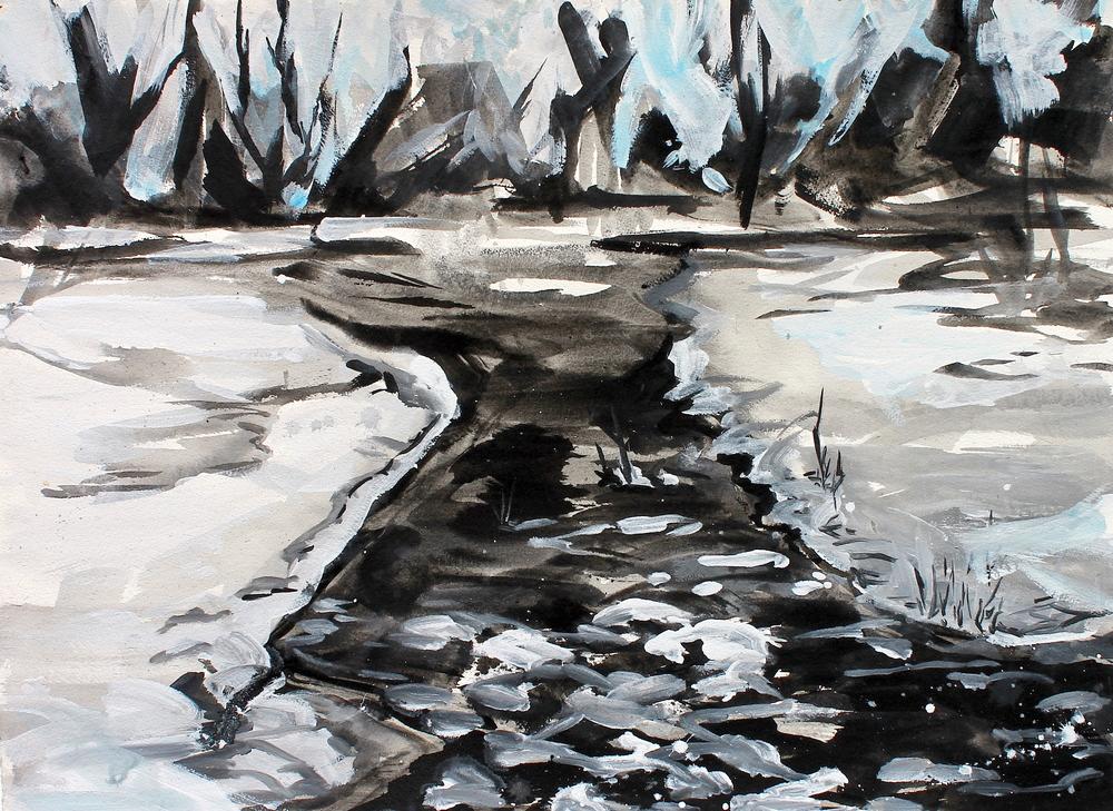 Willowbrook Pond