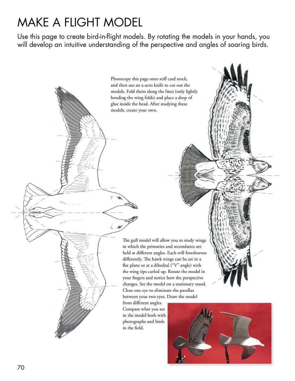 Make-a-flight-model.jpg