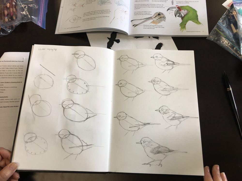 Katherine Voss sketchbook
