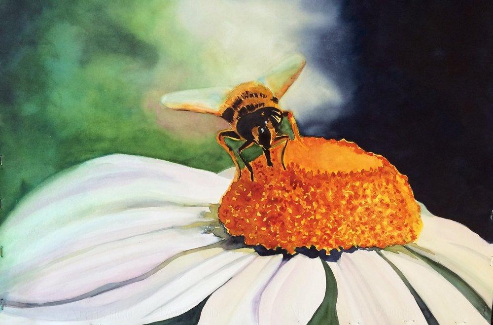 Portrait+of+a+Bee+22+x+30.jpg