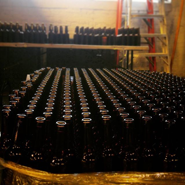 We be poppin' bottles like there's no tomorrow. Well actually we're filling all these longnecks with Heliotropic!  #empiricalbrewery #chicago #craftbeer #Heliotropic