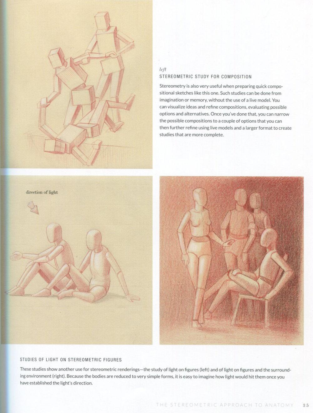 Basic Human Anatomy — Alex Escobar   Art & Animation
