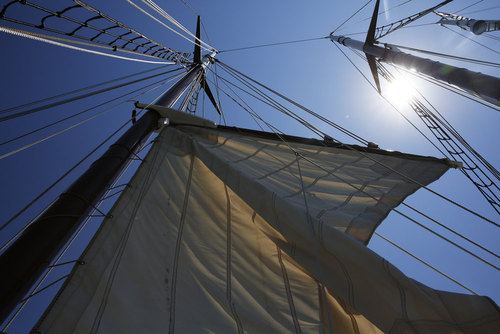 Crew and passengers on the Alliance raise the mast on the schooner Wednesday, June 29, 2016 during Yorktown Sailing Charters' pirate cruise.Copyright: The Daily Press