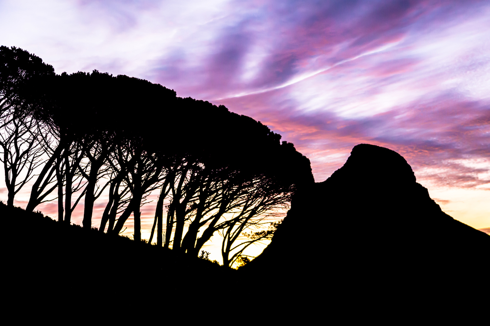 Purple skies over Lion's head.jpg