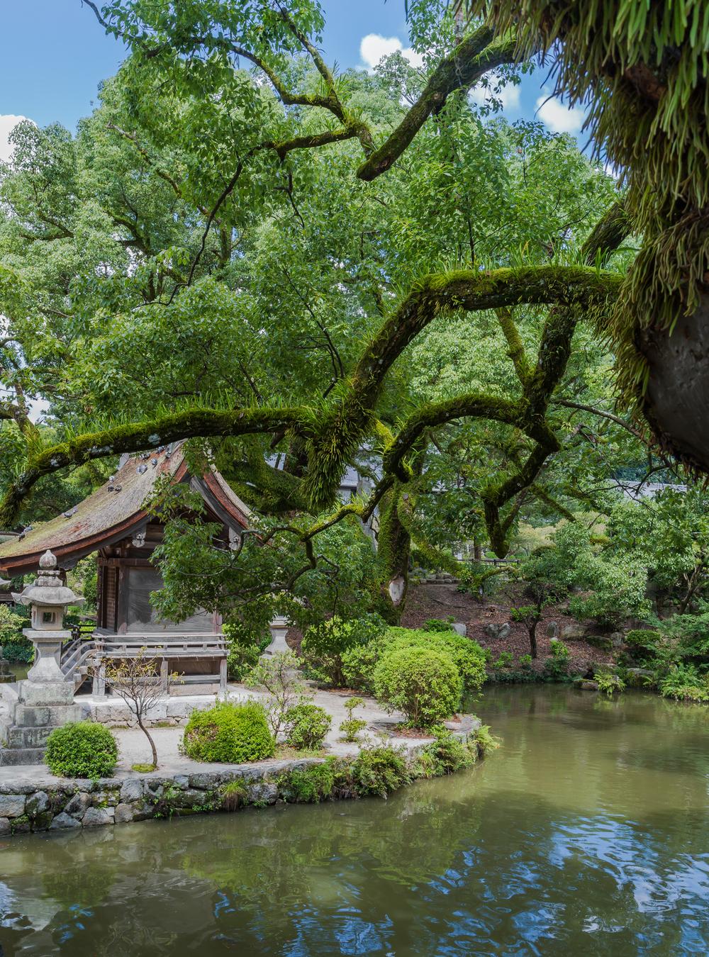 Japanse tuin  te Dazaifu, Japan.jpg