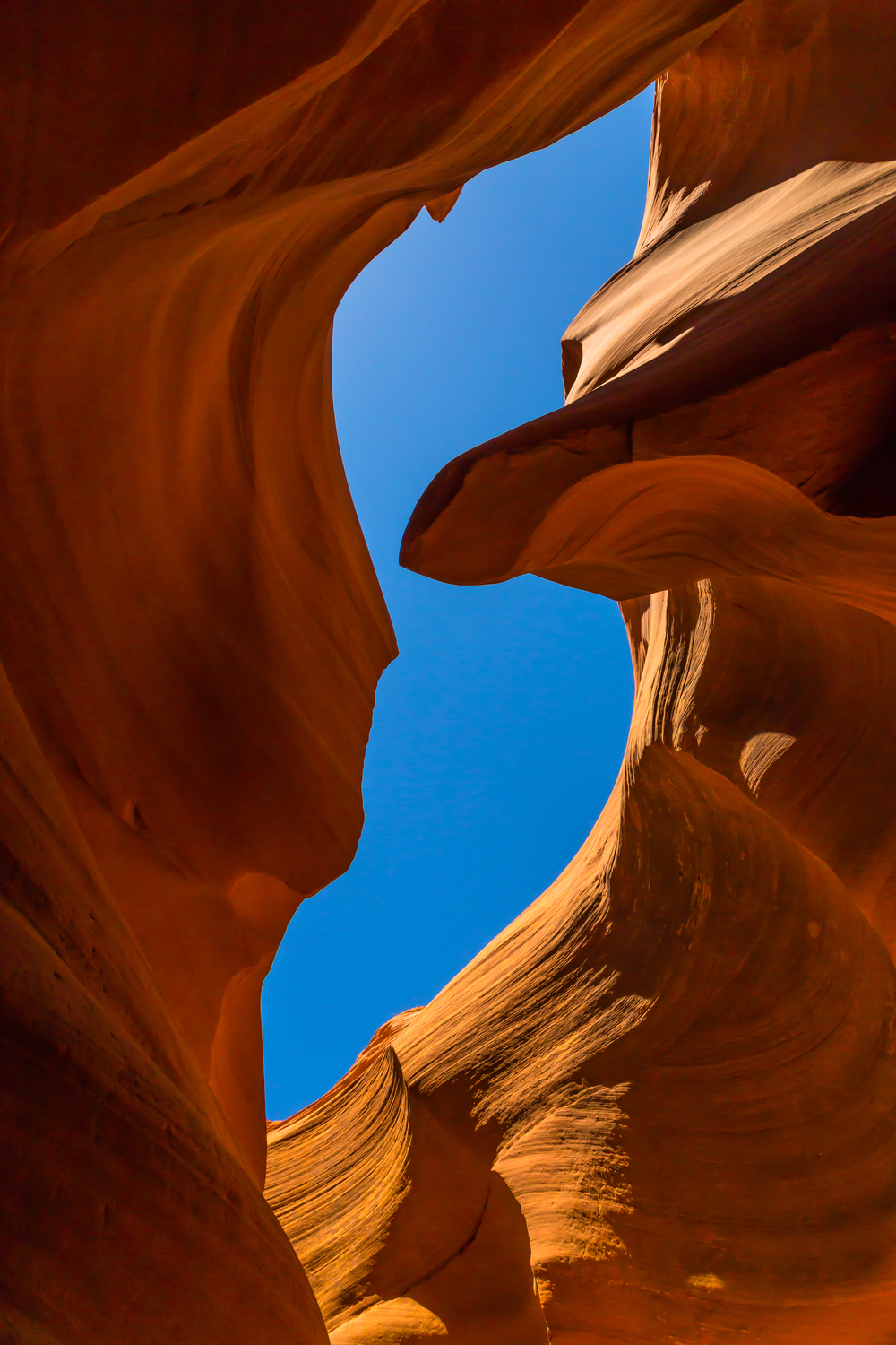Slot canyon roof.jpg