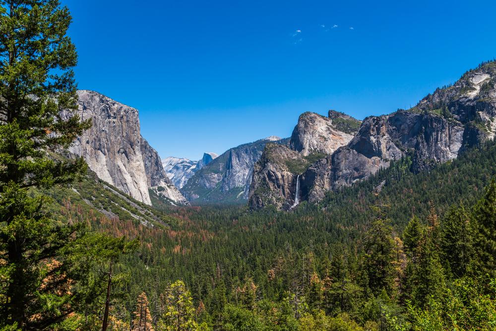 Stunning Yosemite.jpg