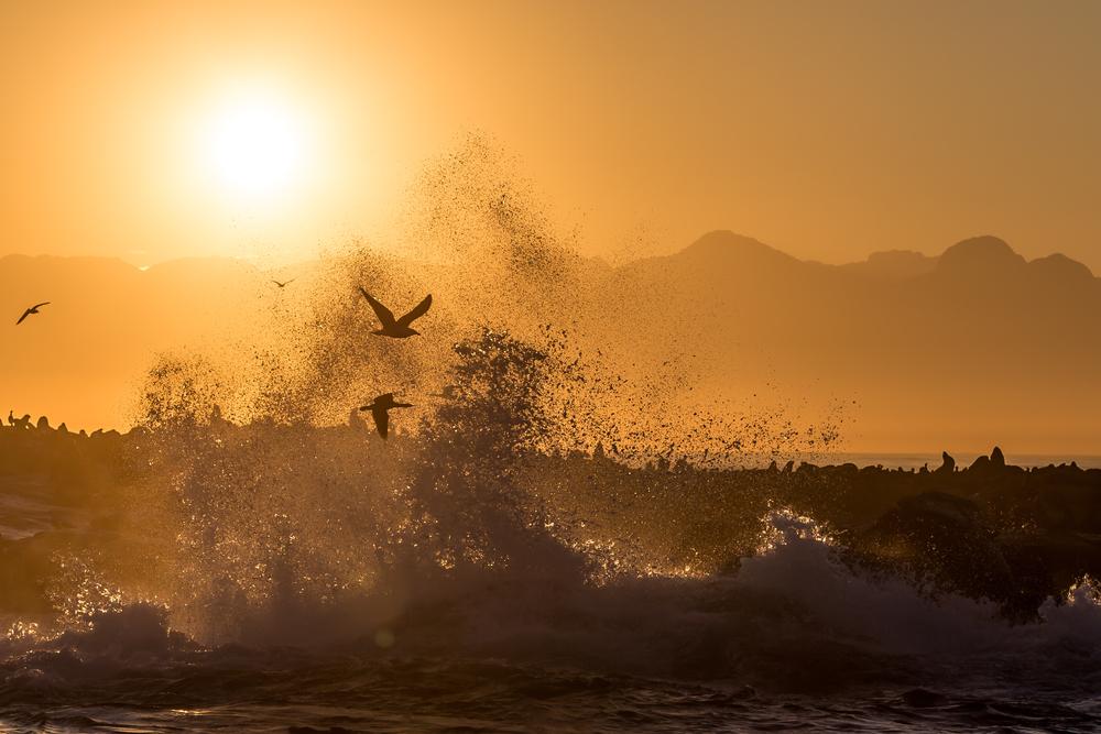 Splashing sunrise at Seal Island.jpg
