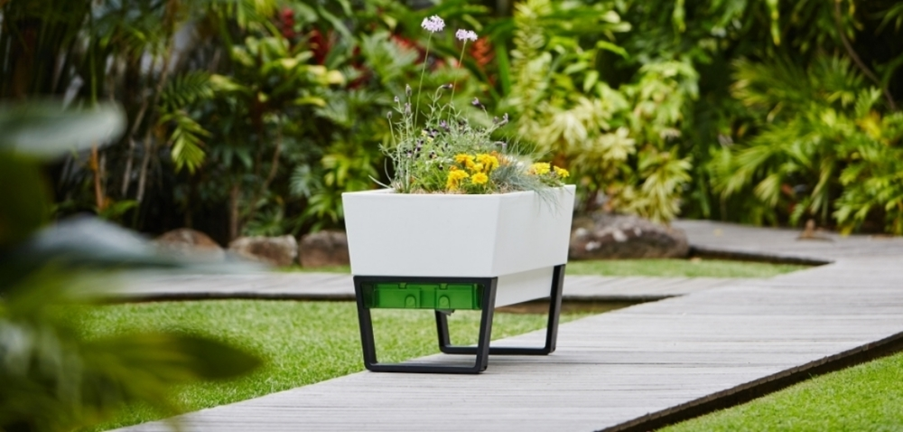 White planter box