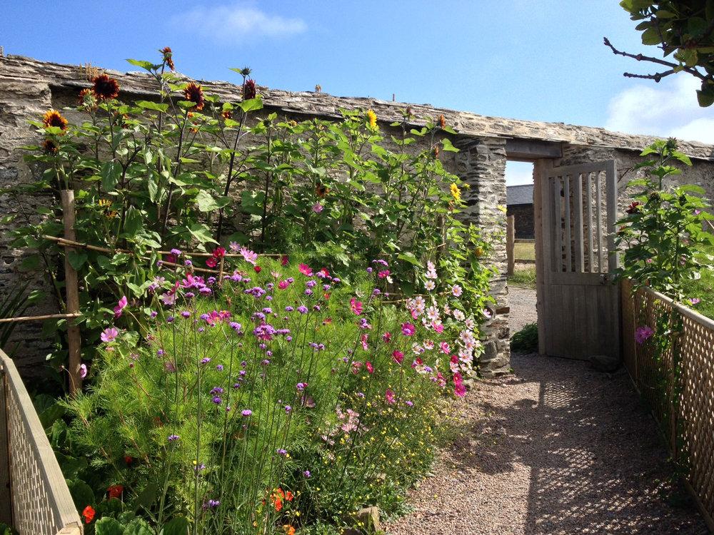 sandleigh-garden-banner.jpg