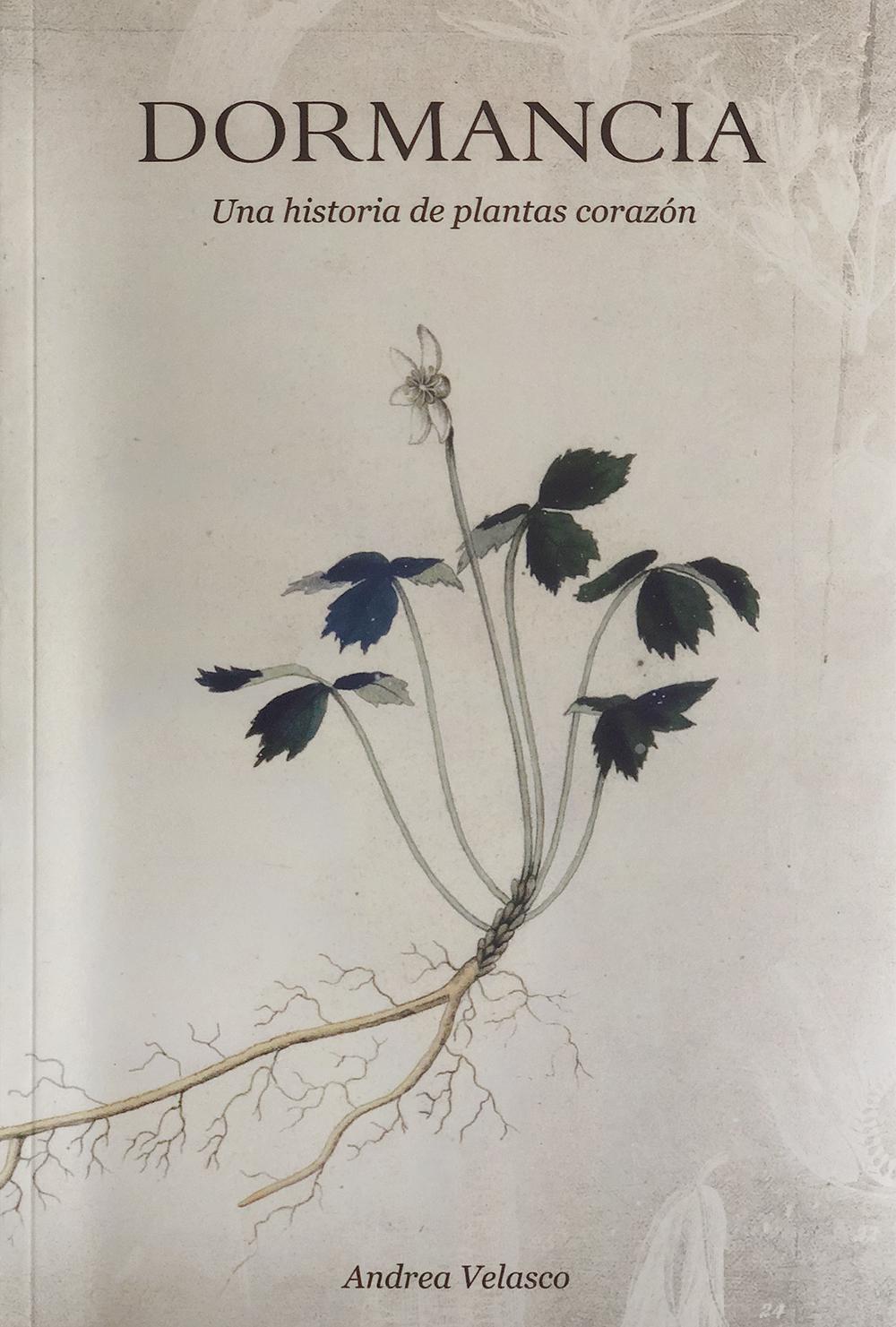 Dormancia - Una historia de plantas corazónpor Andrea VelascoUS $20.00