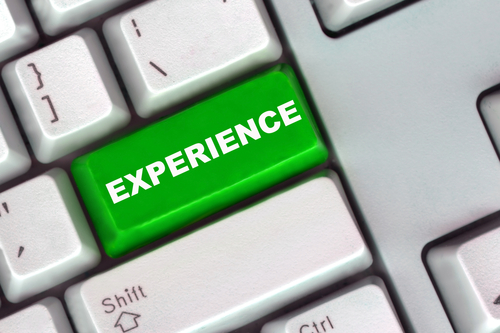 the professional experience and most important part of your resume