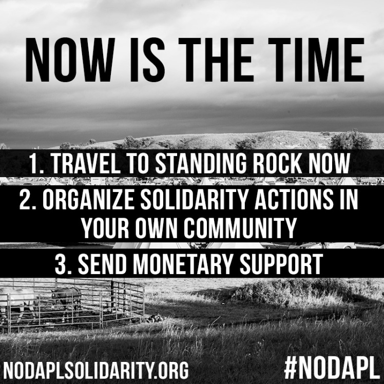 Via  NoDAPLSolidarity.org