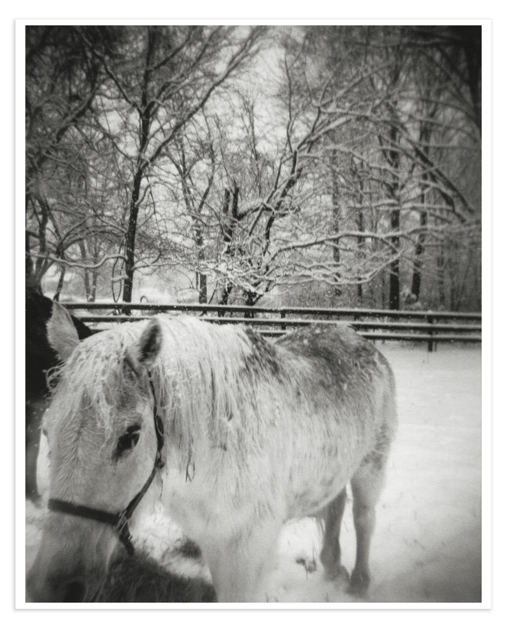 SnowscapeWIPMS.jpg