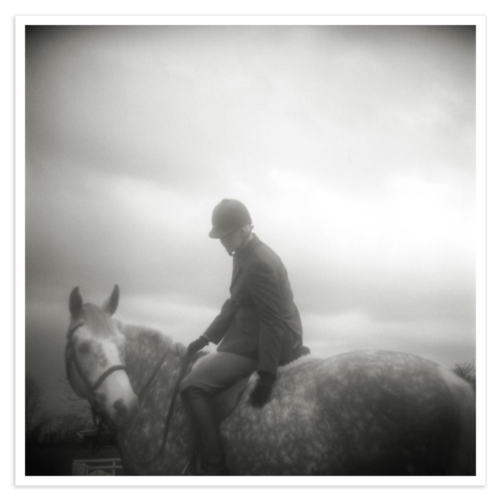 dapple_horse_achannelmix.jpg