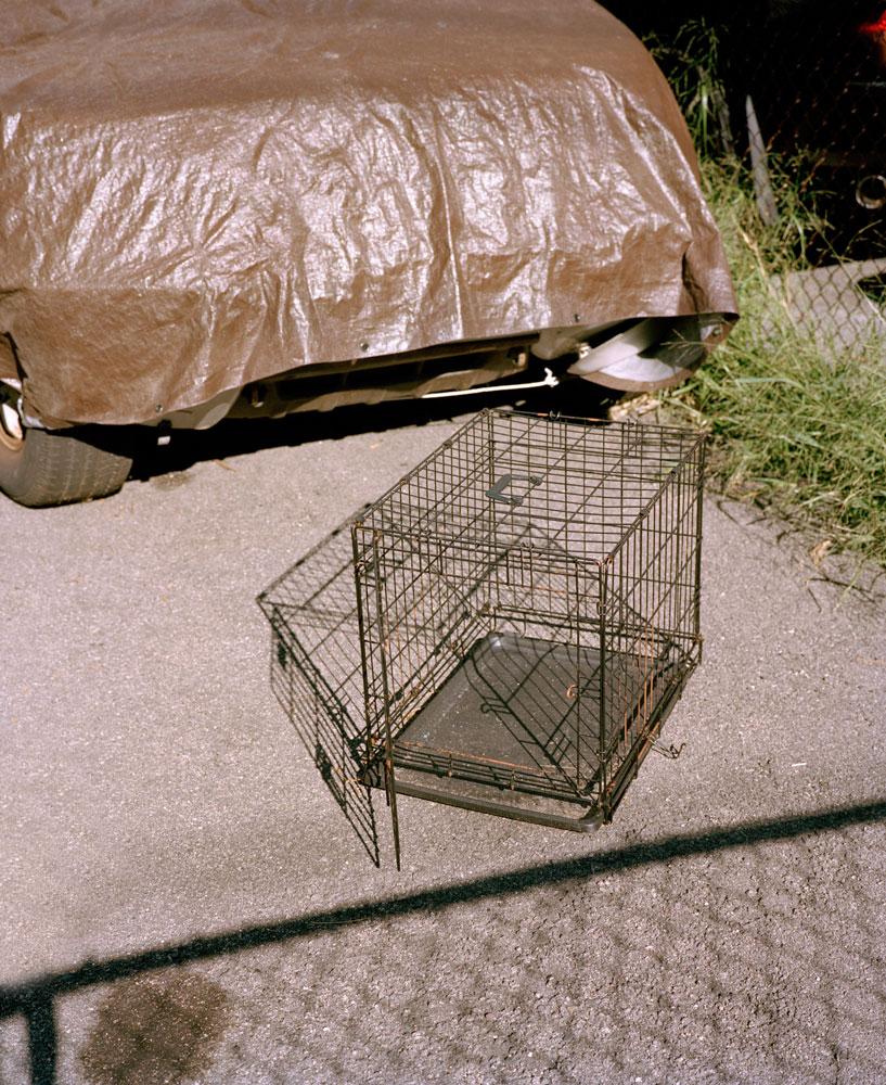 Cage,-Dorchester,-MA.jpg