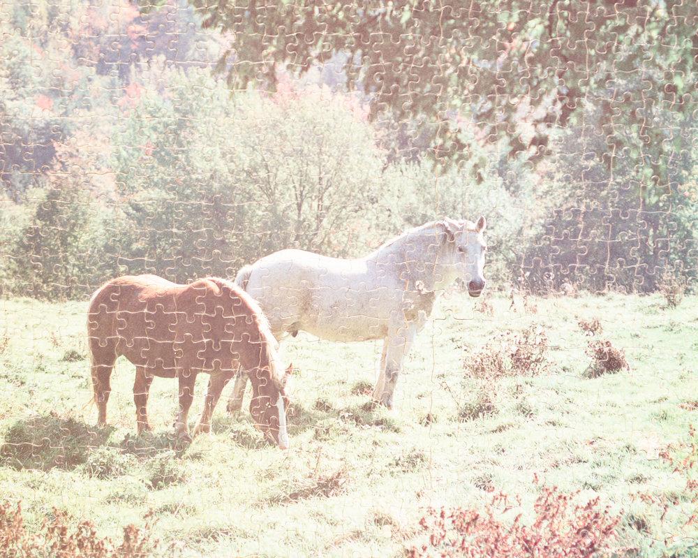 Horses-Puzzle,-near-Chinle,-AZ.jpg