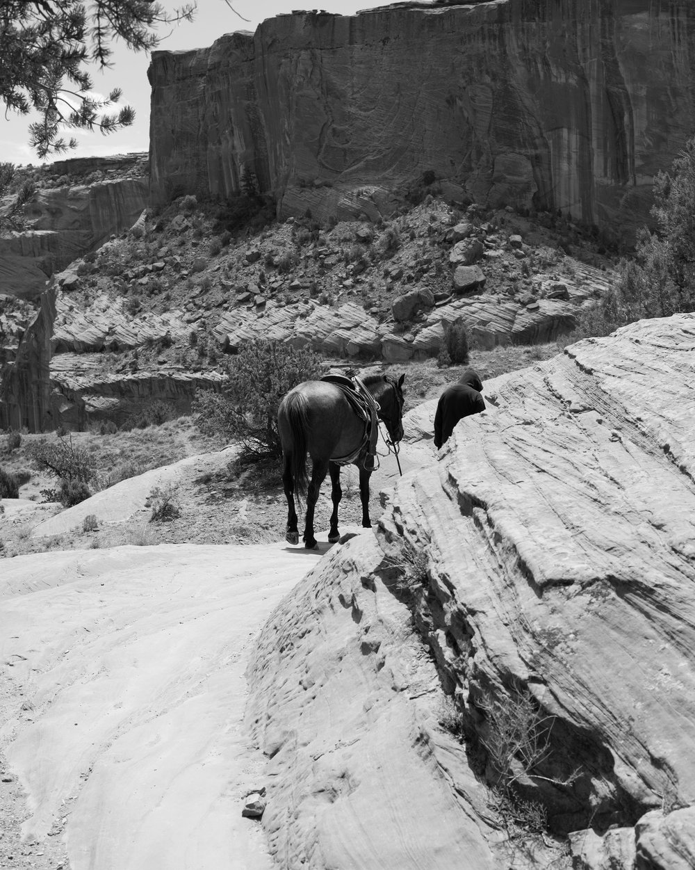 Navajo-Man-with-Horse_V2,-Canyon-De-Chelly,-Chinle,-AZ.jpg