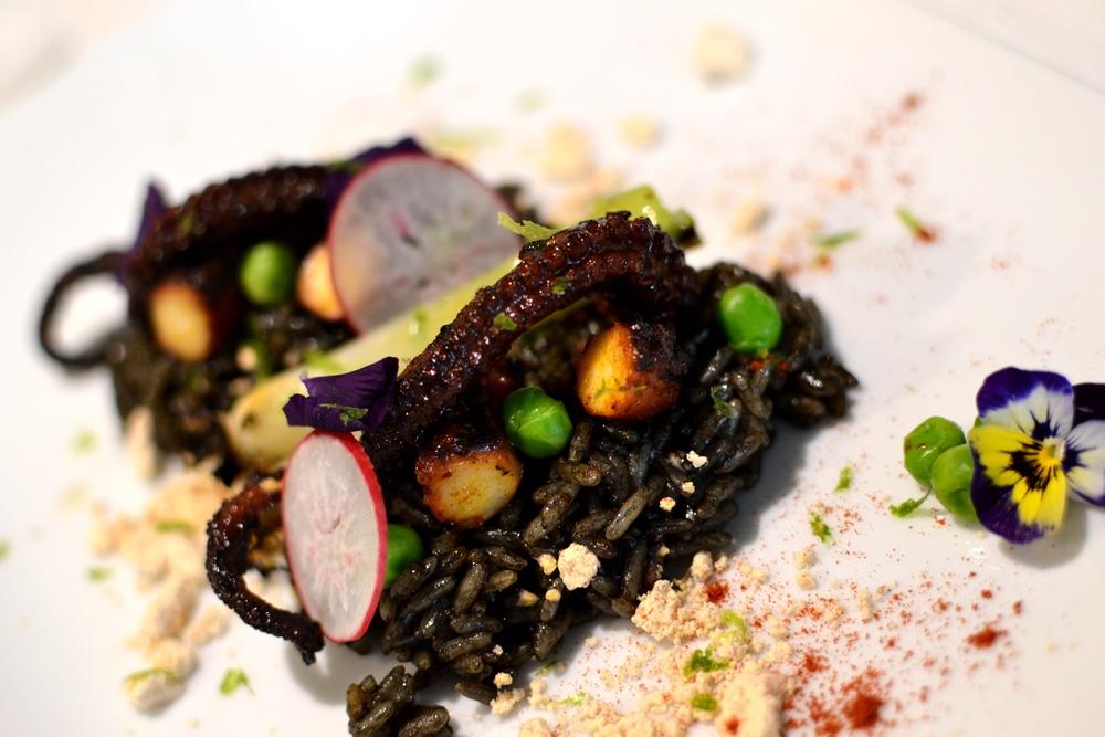 Octopus Gallego & Black Paella