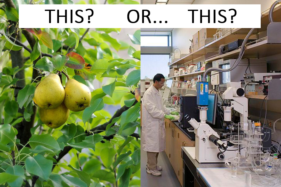 Food from nature vs from a laboraory
