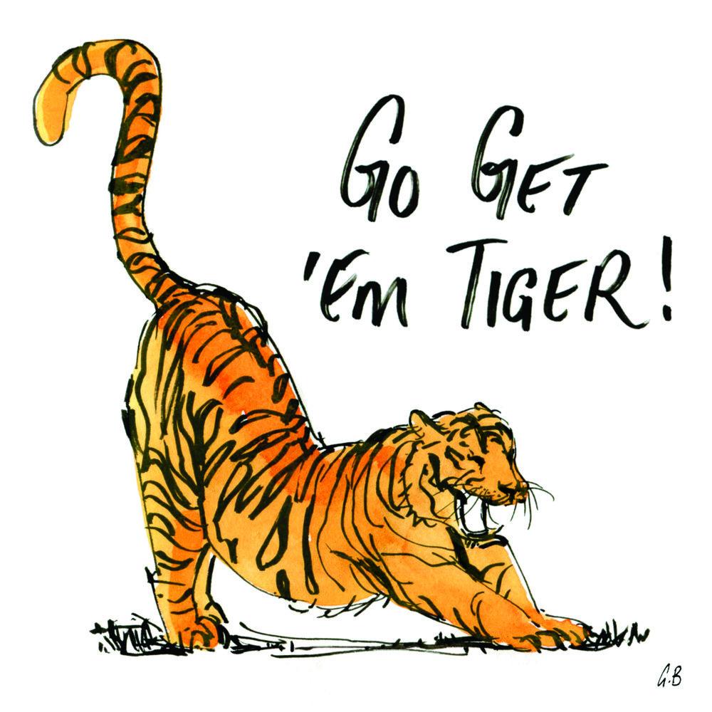 go get em tiger card hoi.jpg