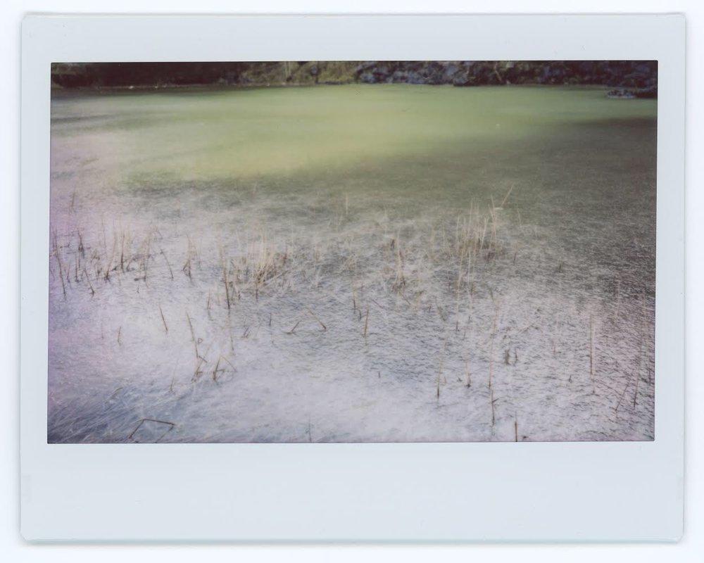 Snapseed-2.jpg