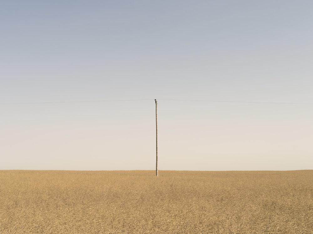 Power Pole (2017)