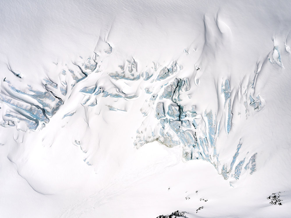 Fossil (Urvogel) | Garibaldi Glacier (2018)