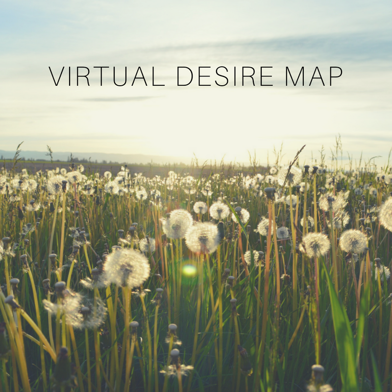 virtual desire map.png