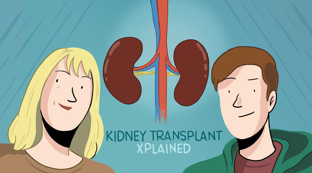 kidney_transplant_xplained.jpg