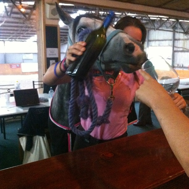 She tells me she was just trying to get a glass of red at the bar? #PonyInTheKitchen