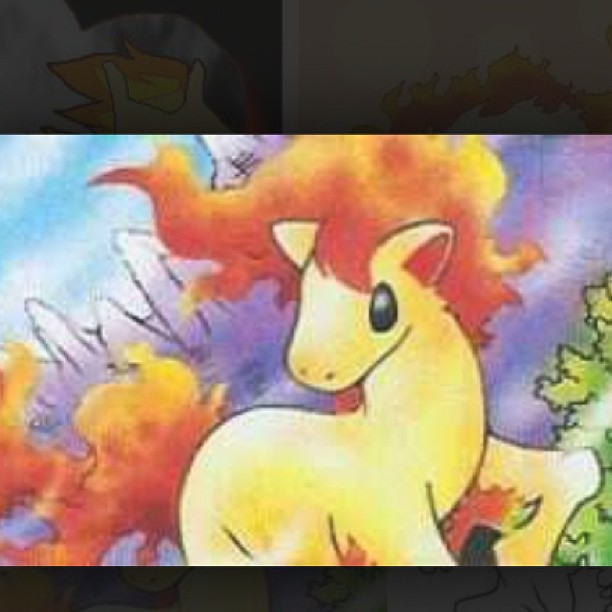 Please can I have a Ponyta for Easter?!! …….. Seriously though.  #pokemon #gottacatchemall